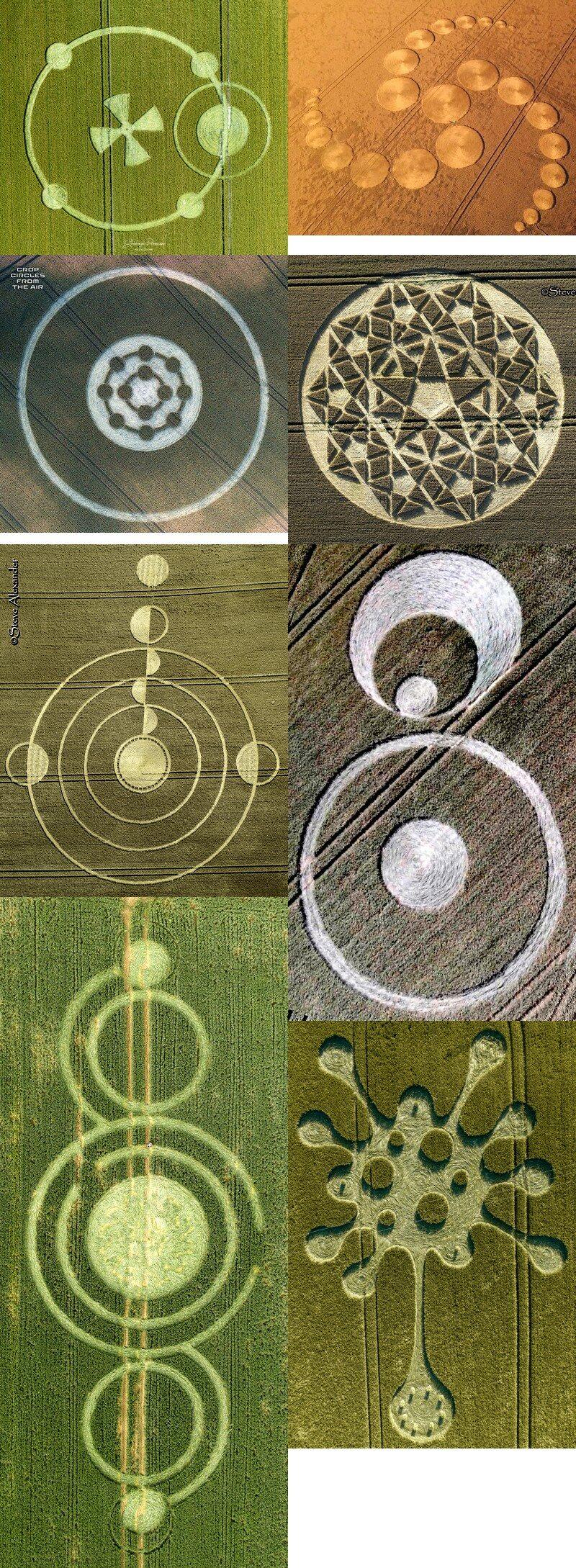 crop circles 2020 - Page 2 2020b10