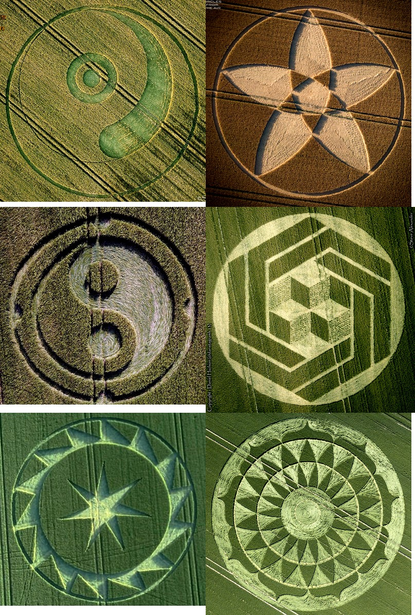 crop circles 2020 - Page 2 2020d10
