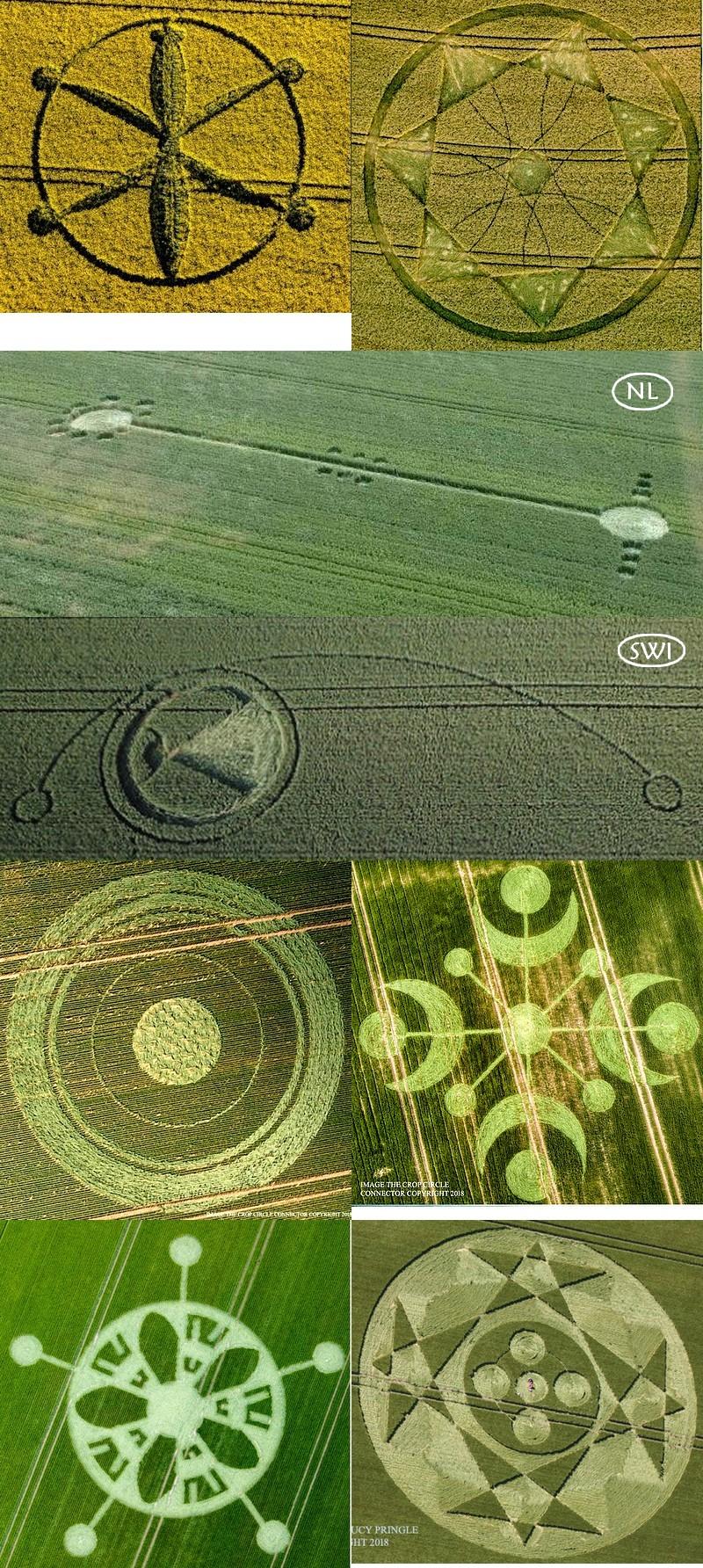 crop circles de 2018 2a11