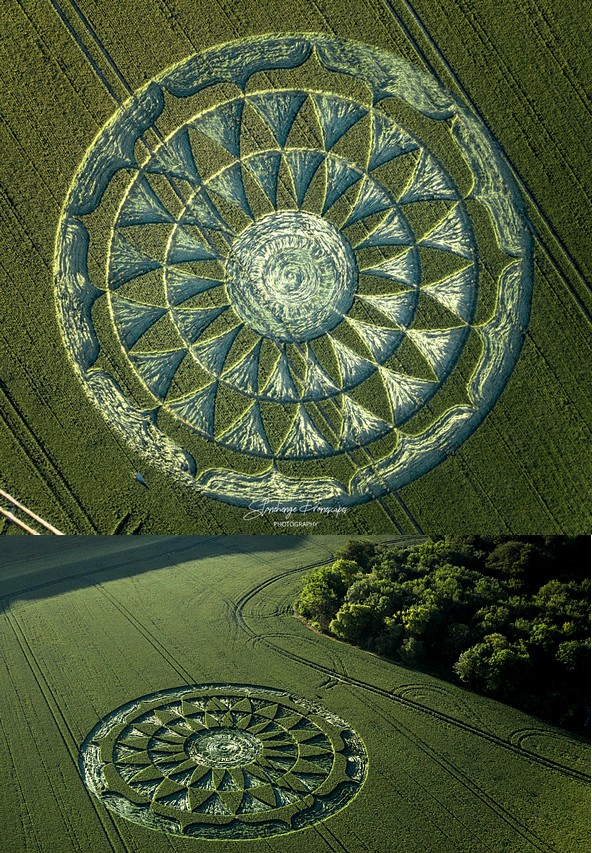 crop circles 2020 Gvjhbk10