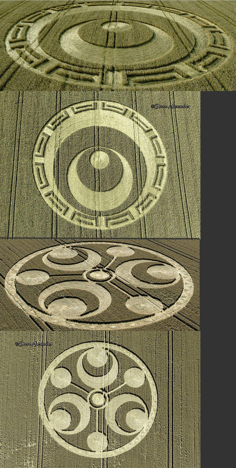 crop circles 2019 - Page 4 Untit153