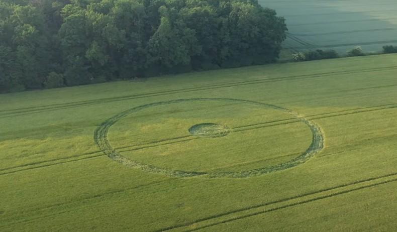 crop circles 2020 Untit158