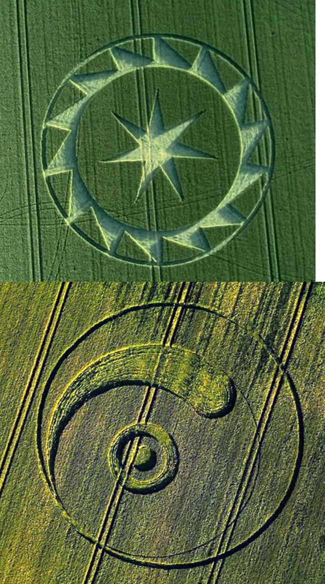 crop circles 2020 Untit161