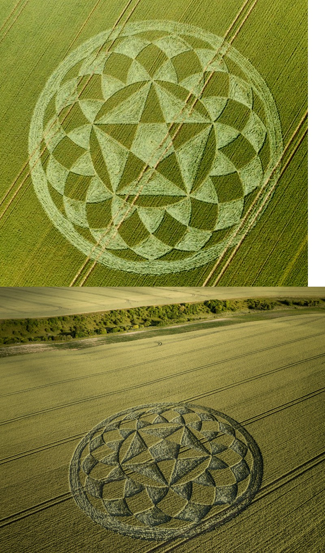 crop circles 2020 Untit164