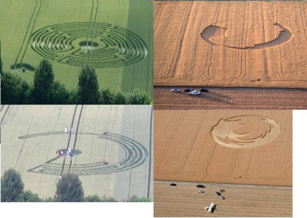 """Crop circle : Comment des youtubeurs ont berné des """"experts"""" en extraterrestres Untitl64"""