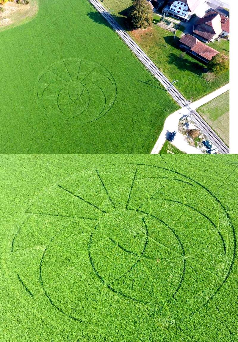 crop circles de 2018 Untitl94
