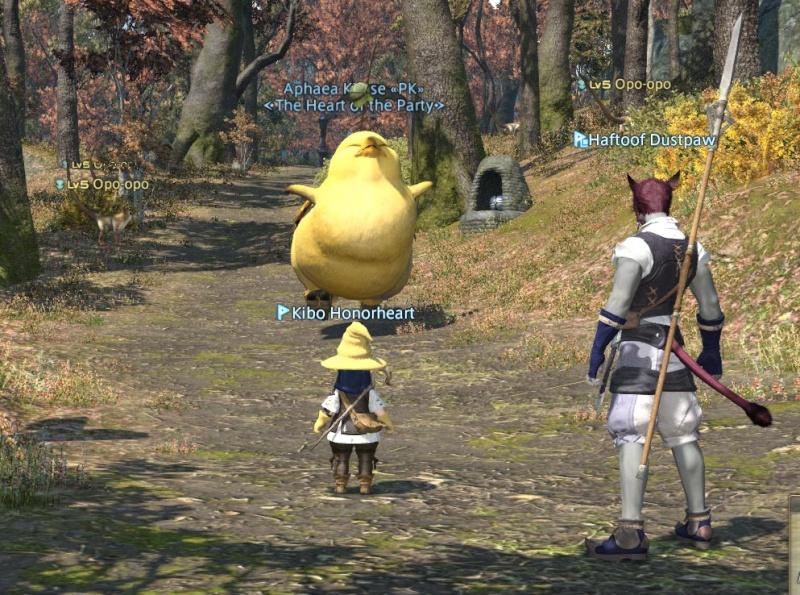 The Forgotten Bay and Final Fantasy XIV Kiboha13