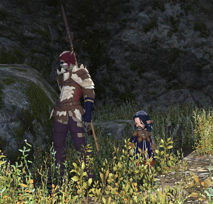The Forgotten Bay and Final Fantasy XIV Kiboha15
