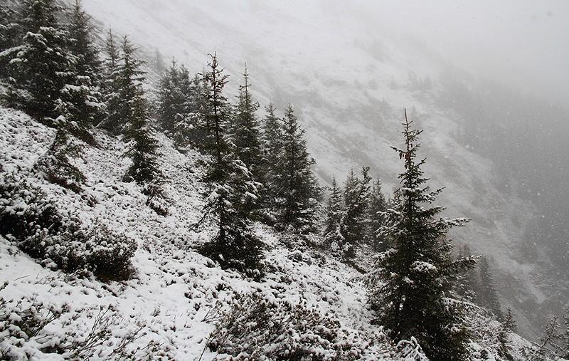 Conditions en montagne et en haute montagne - Page 3 Img_9210