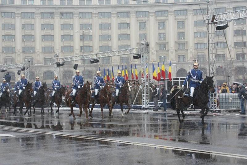 Armée Roumaine/Romanian Armed Forces/Forţele Armate Române - Page 7 1034