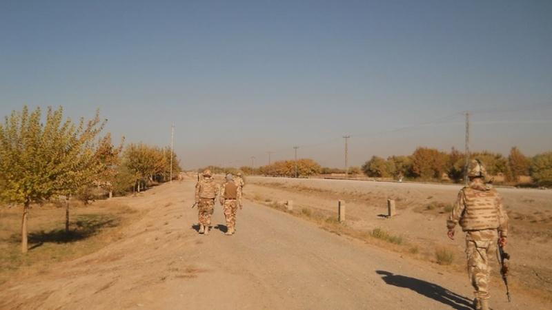 Armée Roumaine/Romanian Armed Forces/Forţele Armate Române - Page 7 1120