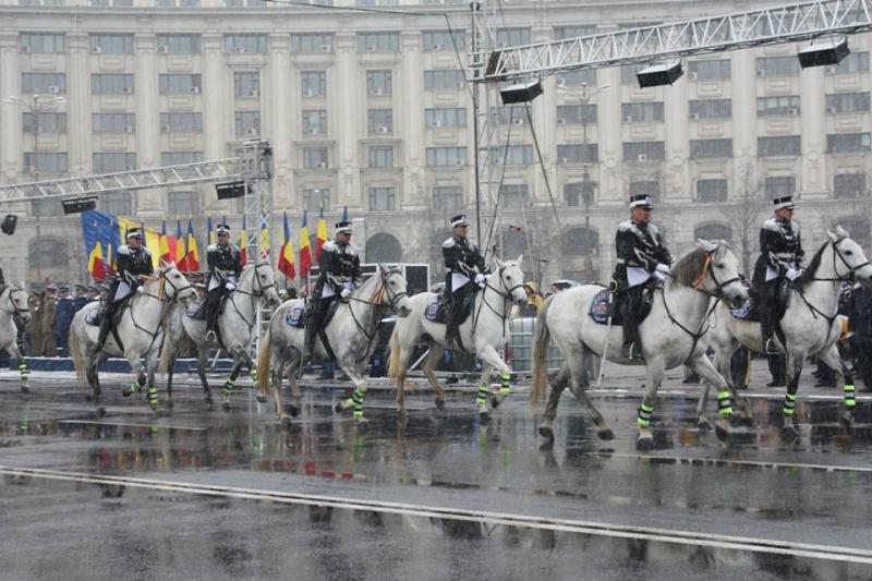 Armée Roumaine/Romanian Armed Forces/Forţele Armate Române - Page 7 1227