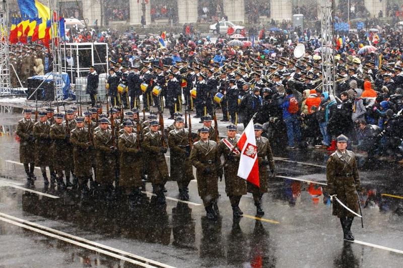 Armée Roumaine/Romanian Armed Forces/Forţele Armate Române - Page 7 1321