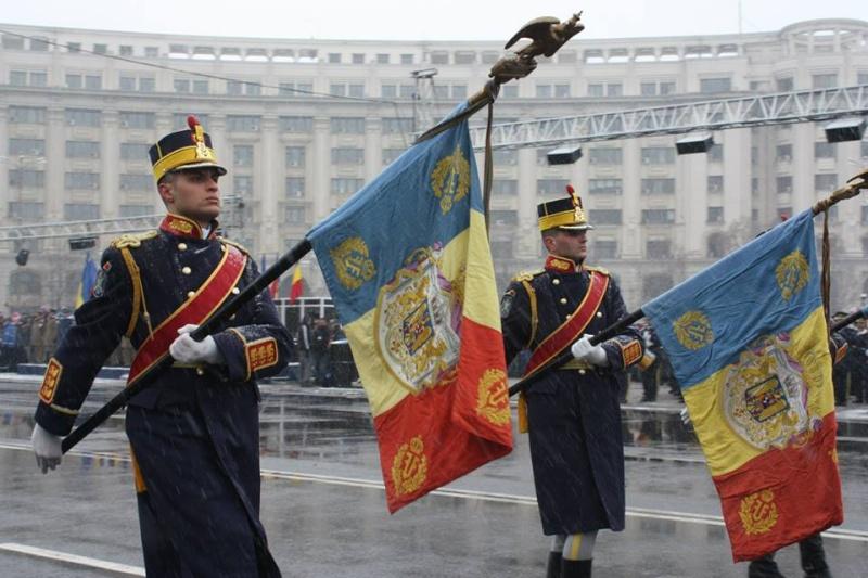 Armée Roumaine/Romanian Armed Forces/Forţele Armate Române - Page 7 1323