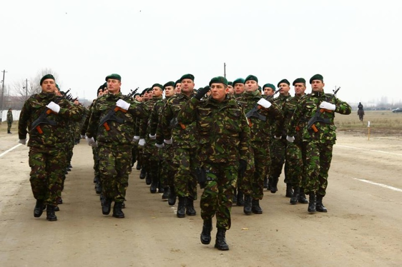 Armée Roumaine/Romanian Armed Forces/Forţele Armate Române - Page 7 2011