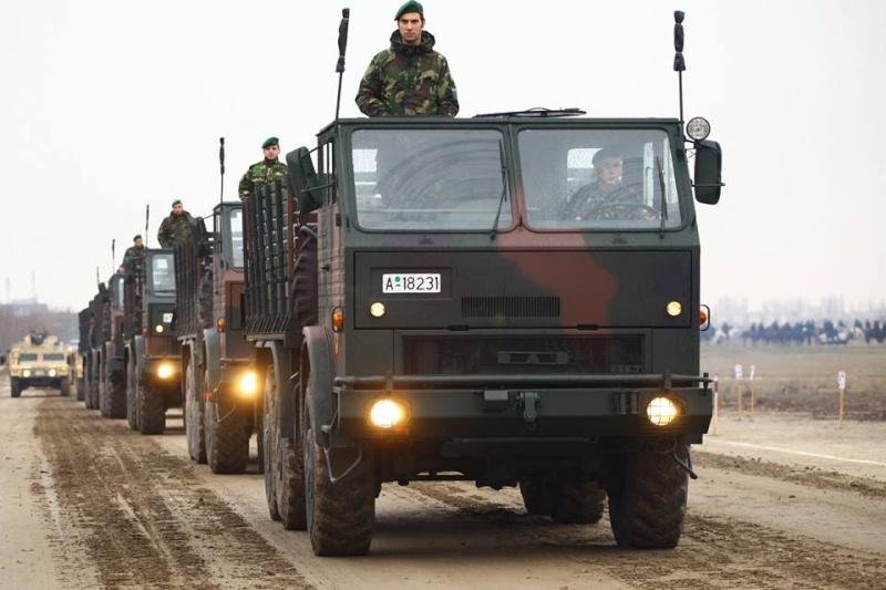 Armée Roumaine/Romanian Armed Forces/Forţele Armate Române - Page 7 3110