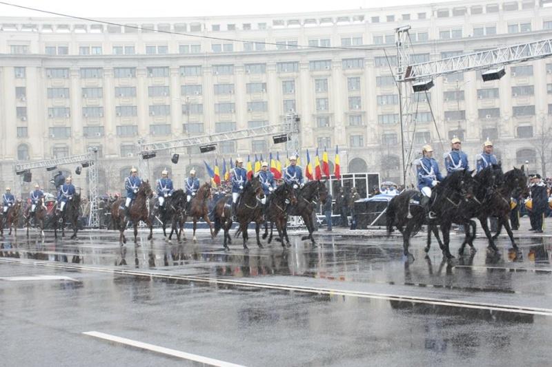 Armée Roumaine/Romanian Armed Forces/Forţele Armate Române - Page 7 939