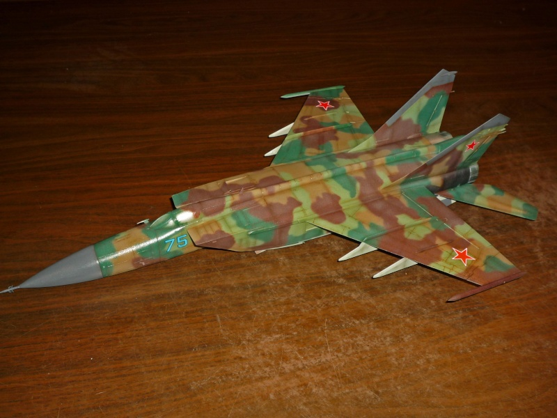 "MiG-25 PD/PDS ""Foxbat"" (Kitty Hawk) - Page 4 P1090317"