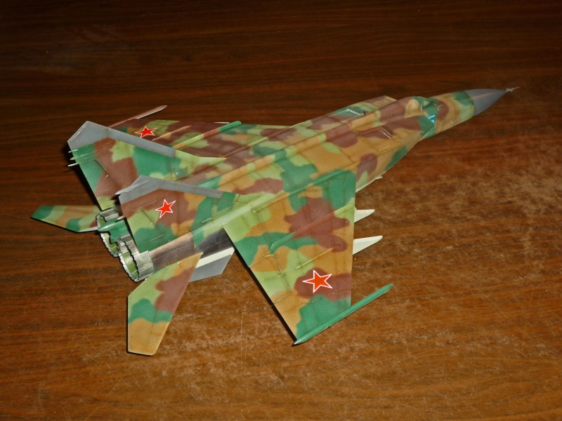 "MiG-25 PD/PDS ""Foxbat"" (Kitty Hawk) - Page 4 P1090319"