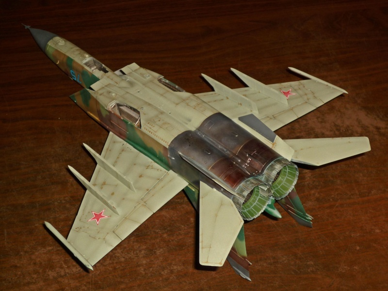 "MiG-25 PD/PDS ""Foxbat"" (Kitty Hawk) - Page 4 P1090321"