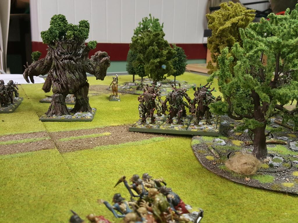 Forces de la Nature vs Morts Vivants 20180717