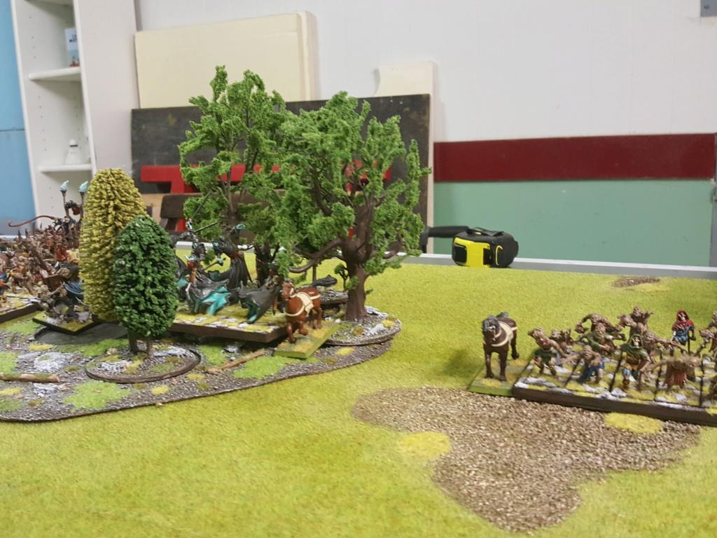 Forces de la Nature vs Morts Vivants 210