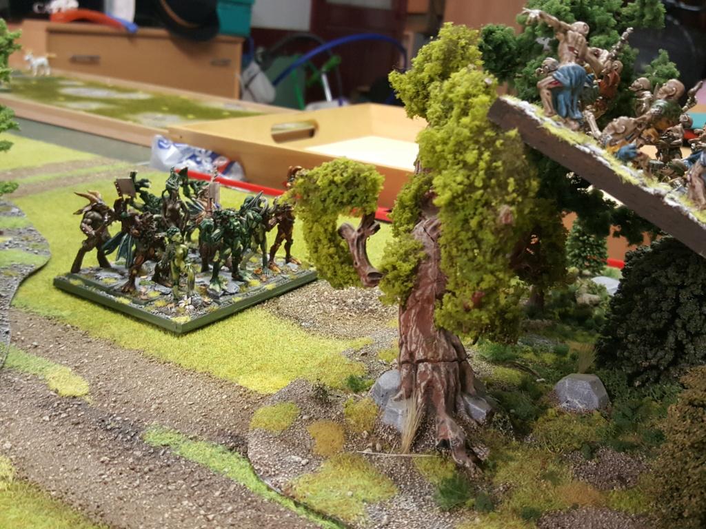 Forces de la Nature vs Morts Vivants 213