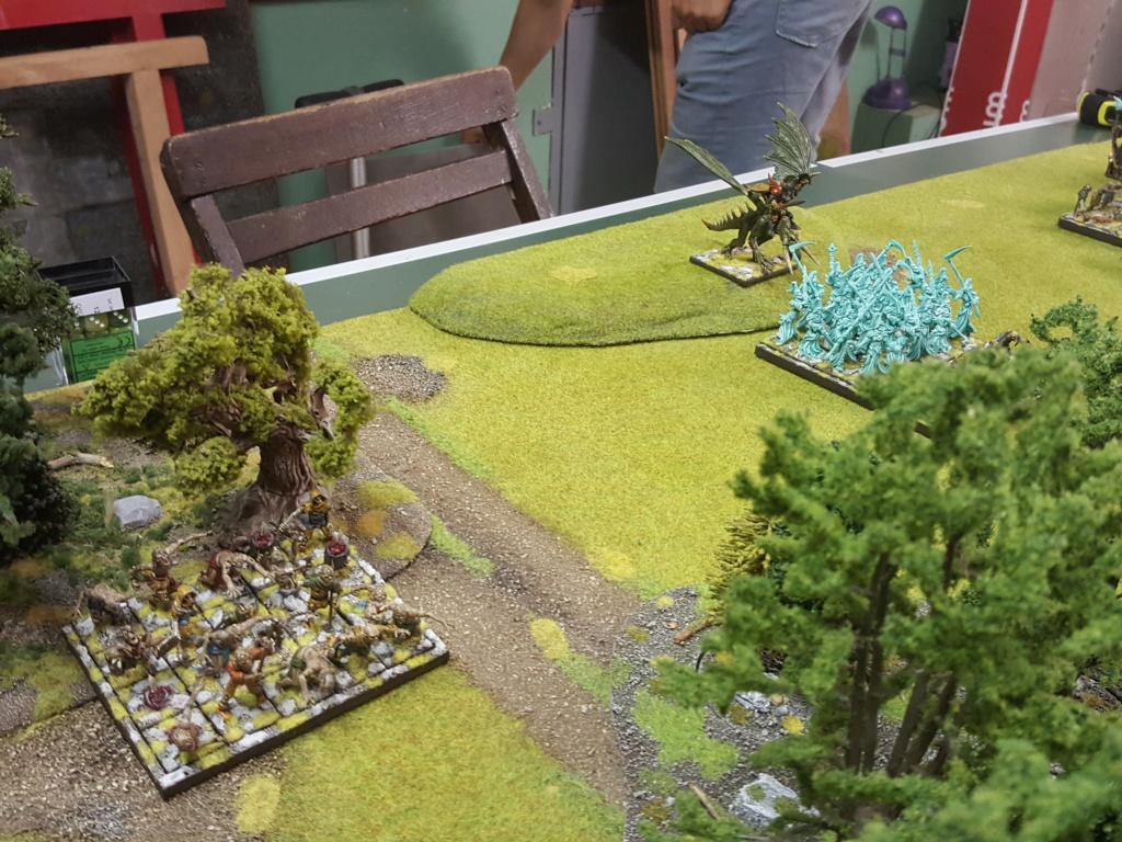 Forces de la Nature vs Morts Vivants 510