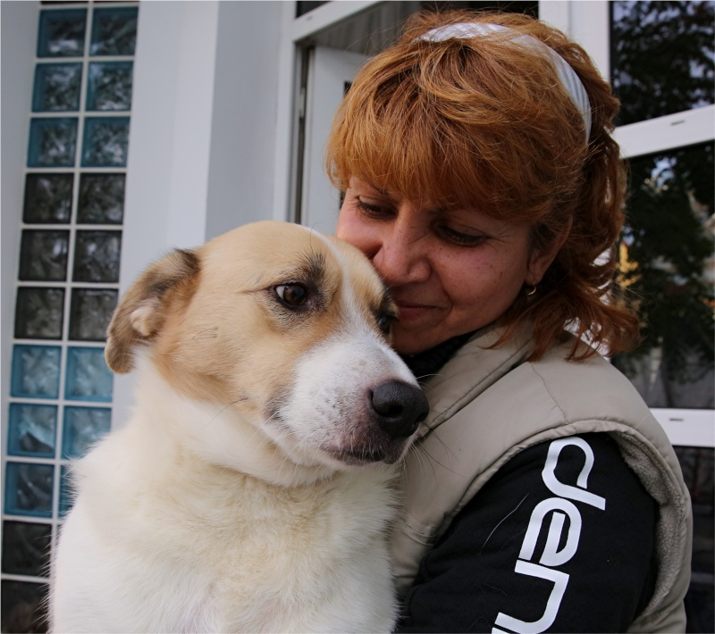 Murmurica, sauvetage de Sanda, chienne née en 2011 Murmur18