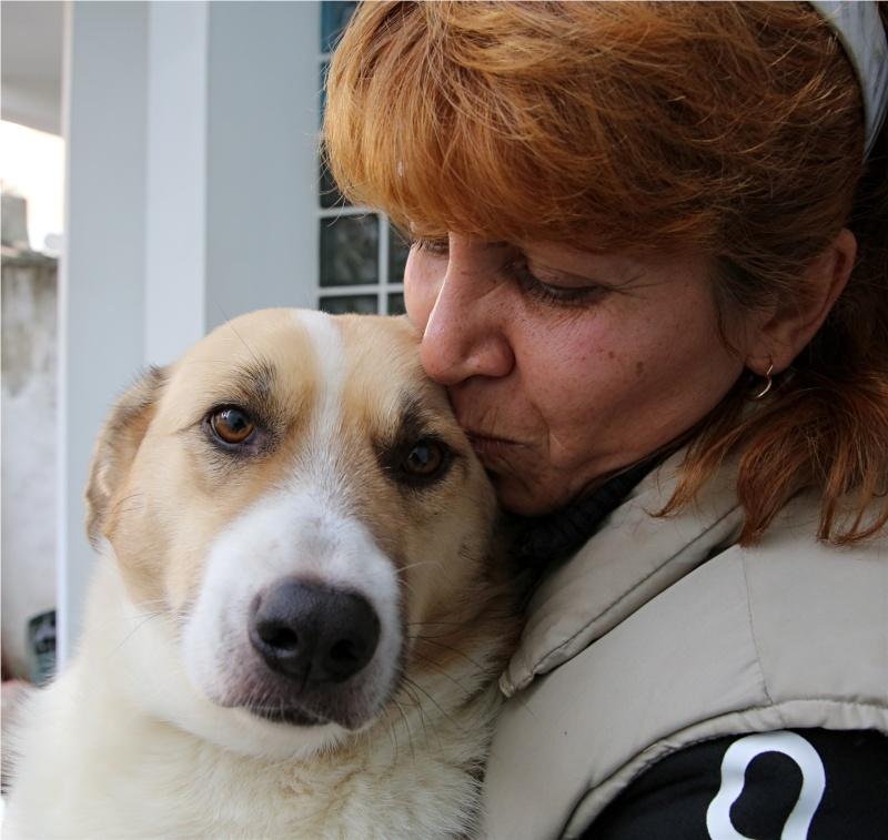 Murmurica, sauvetage de Sanda, chienne née en 2011 Murmur20