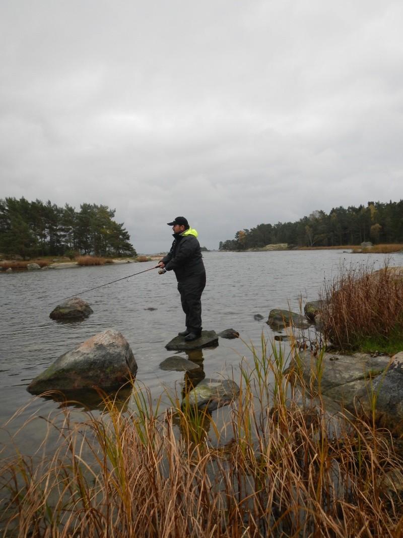 Voyage Suède Dscn2712
