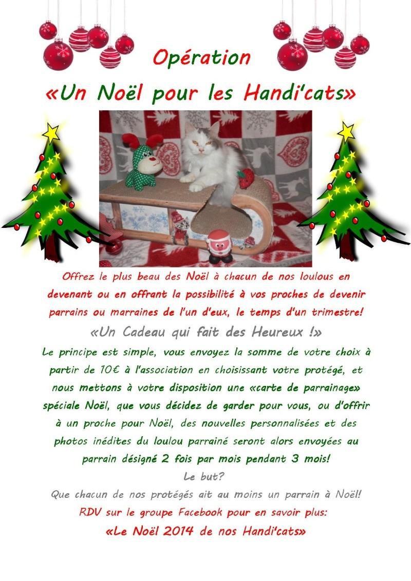 Un Noël pour les Handi'cats Noyl_d10