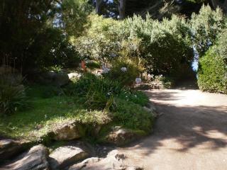 Le Jardin Georges Delaselle de l'ile de Batz !!! Photo_69