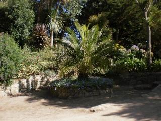Le Jardin Georges Delaselle de l'ile de Batz !!! Photo_70
