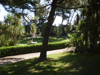 Le Jardin Georges Delaselle de l'ile de Batz !!! Photo_71