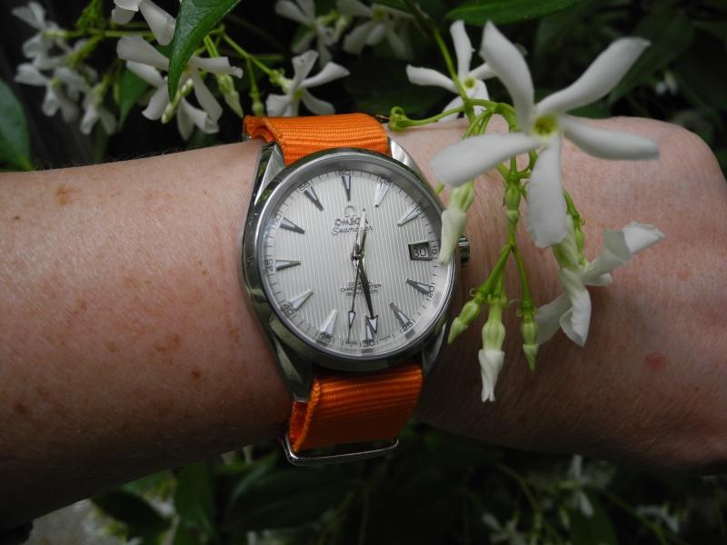 ward - Les FAMeuses et leurs montres - Page 2 Photo_10