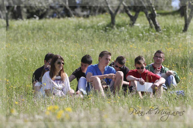 Humanisme, Renaissance et... Ophrys ! Pian_d18