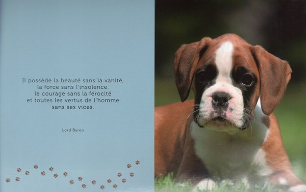 citations sur le chien 32d3d410