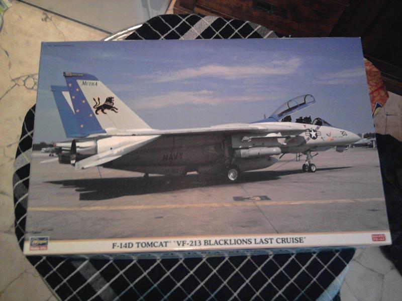 F-14D Tomcat 'Blacklions Last Cruise' / Hasegawa, 1:48 01_14