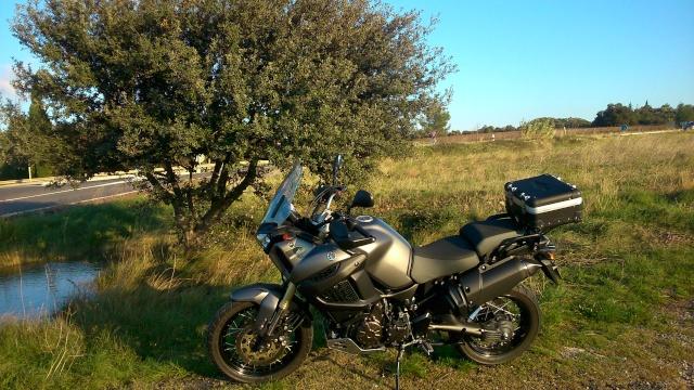 Vos plus belles photos de moto - Page 39 Dsc_0131