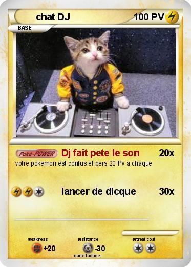 Les chats ! Fz6obs10