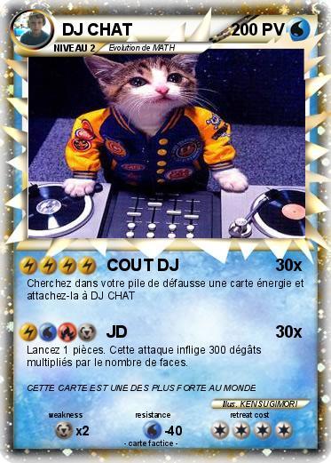 Les chats ! Hceylo10