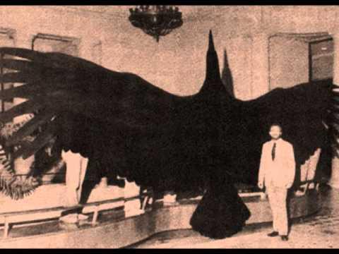 Algunos de los animales más grandes de la historia Argent10