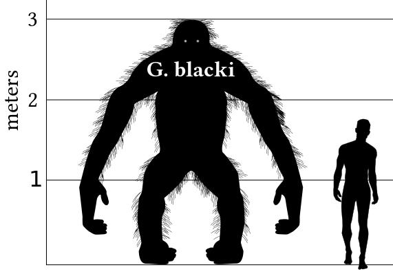 Algunos de los animales más grandes de la historia Gigant10