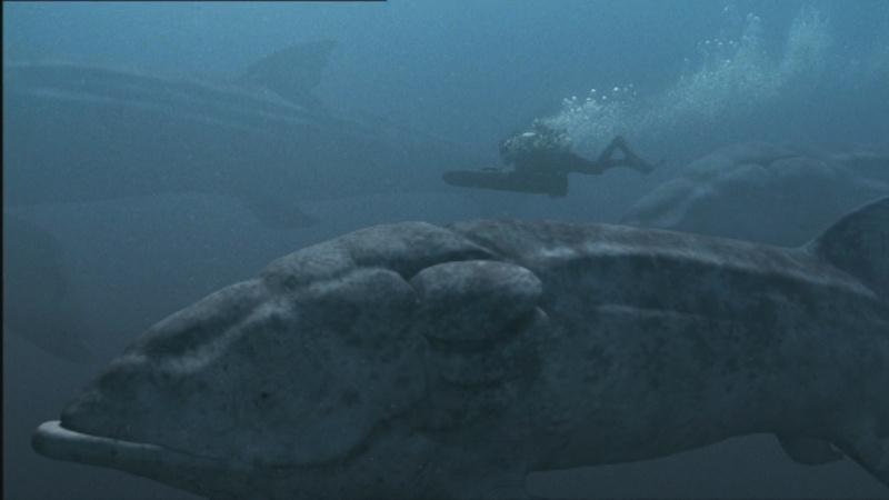 Algunos de los animales más grandes de la historia Leedsi10
