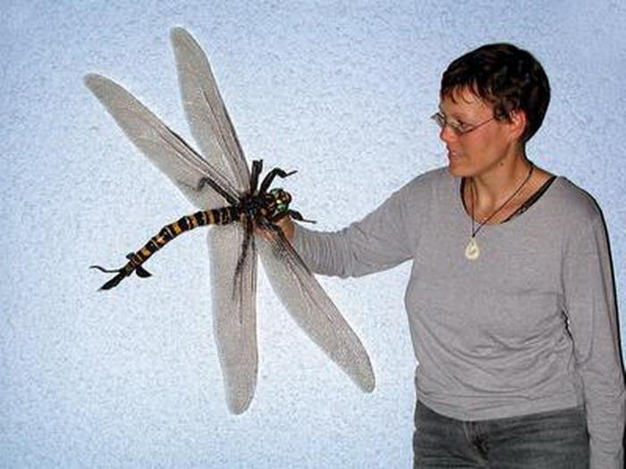 Algunos de los animales más grandes de la historia Megane10