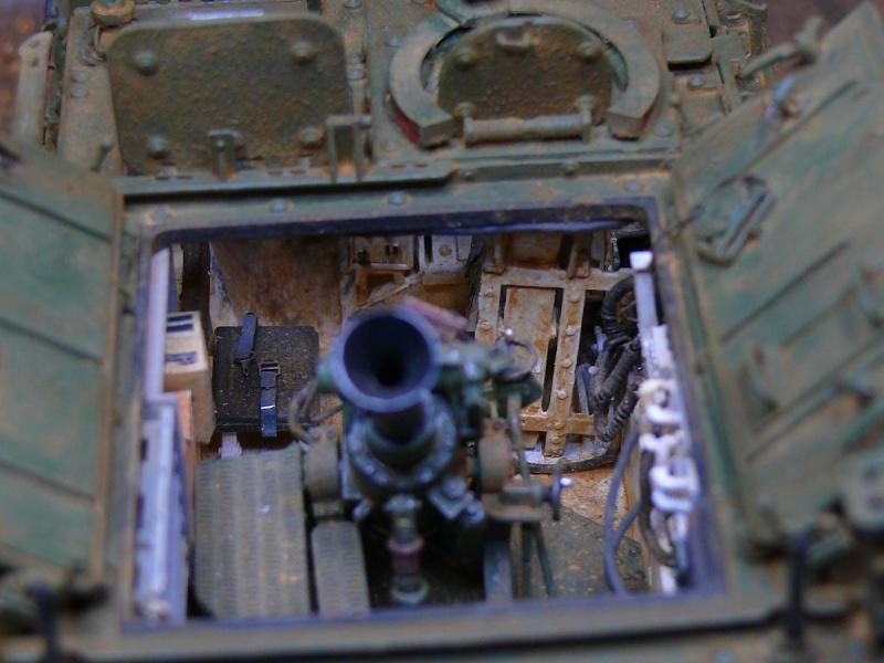 STRYKER M1129 MORTAR CARRIER VEHICLE de TRUMPETER au 1/35 - Page 6 Photo161