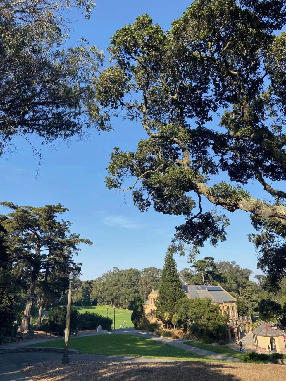 forestgum - California Dream - Octobre 2019 - Disneyland Ressort à partir de la page 3  - Page 2 Img_0012