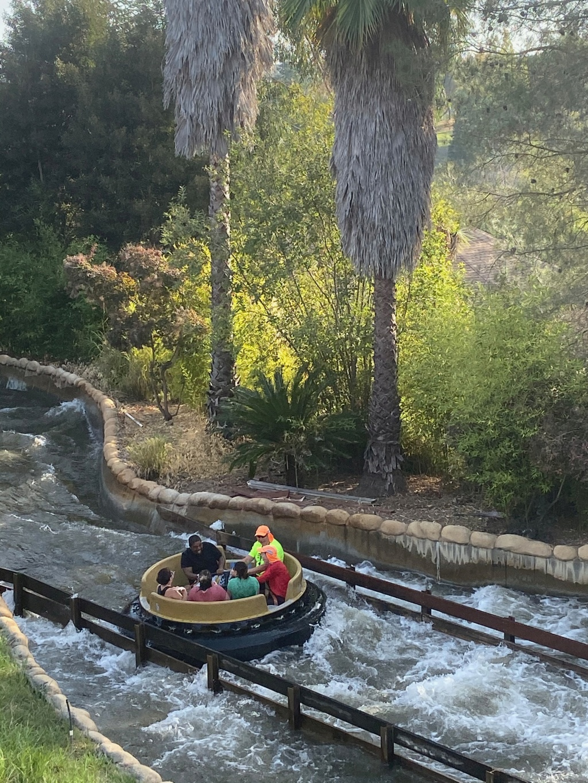 forestgum - California Dream - Octobre 2019 - Disneyland Ressort à partir de la page 3  - Page 2 Img_0119