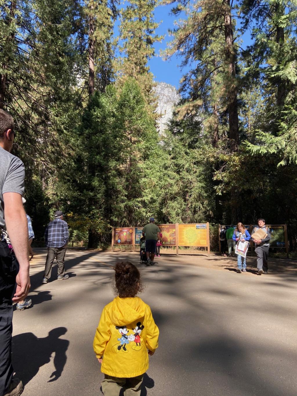 forestgum - California Dream - Octobre 2019 - Disneyland Ressort à partir de la page 3  - Page 3 Img_0217